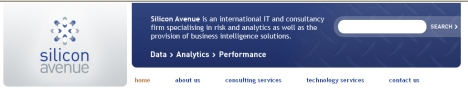 Silicon Avenue offers more than a decade of experience in providing business intelligence solutions.